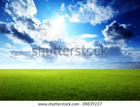 spring day and green field