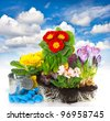 spring flowers hyacinth, crocus and primula over blue sky background. gardening concept - stock photo