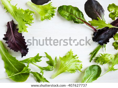 Spring mix. Fresh green salad. Frame green salad on wooden background with copy space