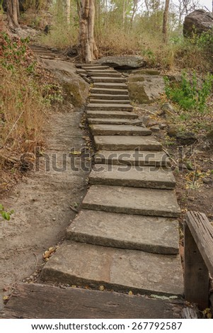 stair pathway stone in forest