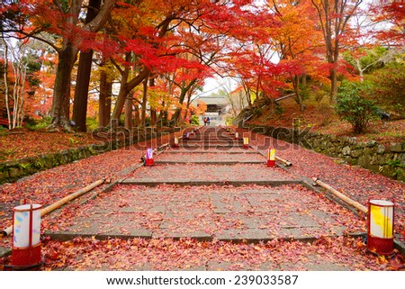 staircase in an entrance of a temple in kyoto with red maple foliage in autumn