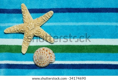 Starfish and shell on striped beach towel, room for copy space