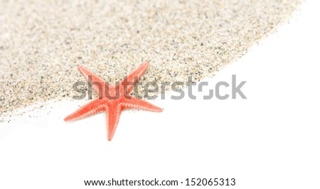 Starfish on a sand beach