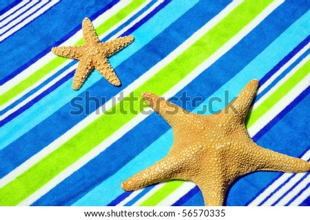 Starfish on Beach towel
