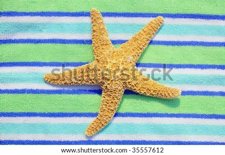 Starfish, Sea Star on striped towel