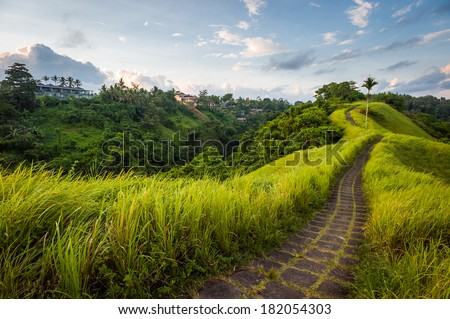 Stone road on the top of the hill in Ubud, Indonesia