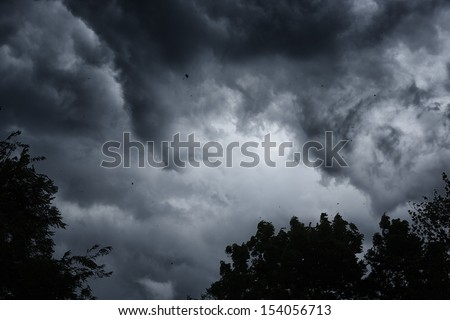 Stormy sky, blowing wind leaves and debris in the air, Webster County, West Virginia, USA