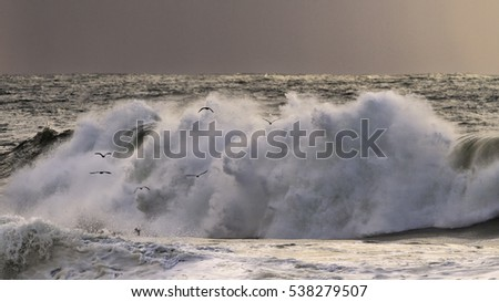 Stormy waves in an autumn sunset
