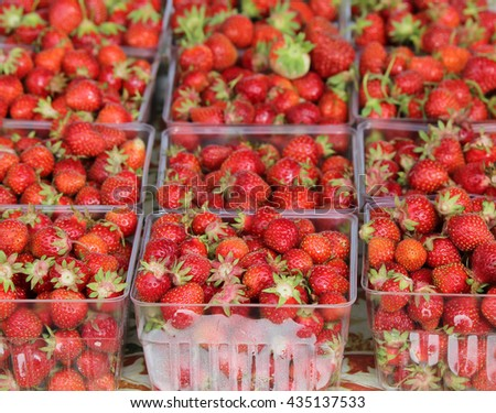 Strawberry quarts at farmers market