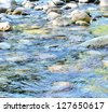 Stream flows calmly in the forest - stock photo
