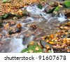 Stream in Autumn - stock photo