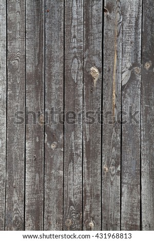structure of the tree wooden background