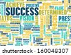 Success and Status to Achieve in Life - stock photo