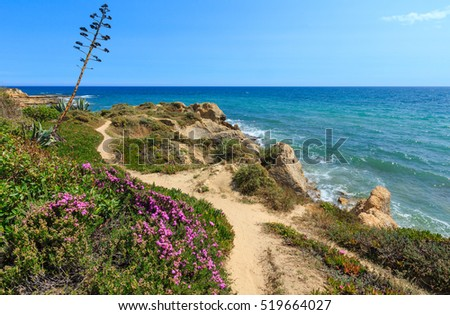 Summer blossoming Atlantic rocky coast view with purple flowers (Albufeira outskirts, Algarve, Portugal).