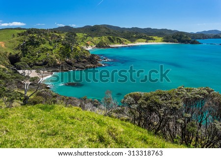Summer Landscape with Blue Sky on the Pacific Sea Coast, Bay Of Islands, Northland, North Island, New Zealand