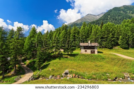 summer view of Pejo valley, Trentino, Italy