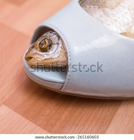 Sun-dried fish within the female shoe. Food and foot