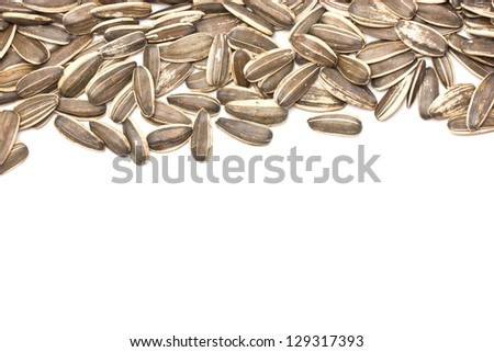 Sunflower seeds with text space.