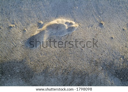 Sunlit footprint in the sand at the beach