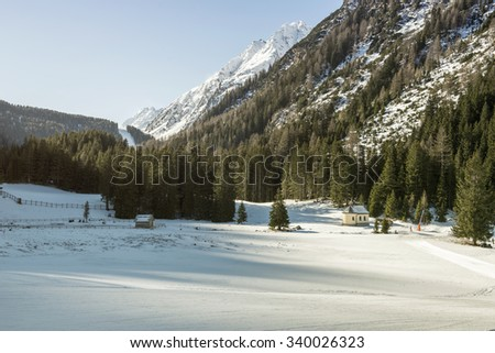 Sunny day in the snowy mountains and forest