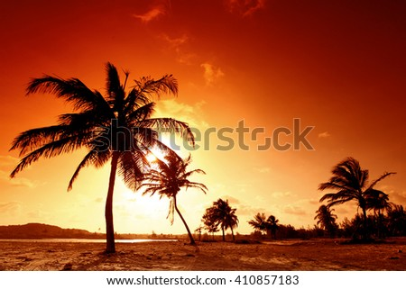Sunset on tropical beach with palm trees