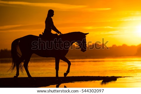 Sunset silhouette of horse rider in sunset landscape