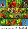 sweet peppers of different varieties collection - stock photo