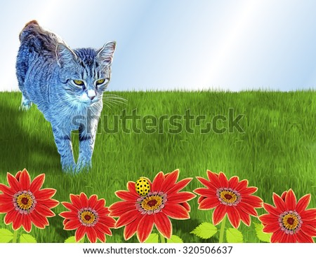 Tabby Cat Watching Bug on Flower