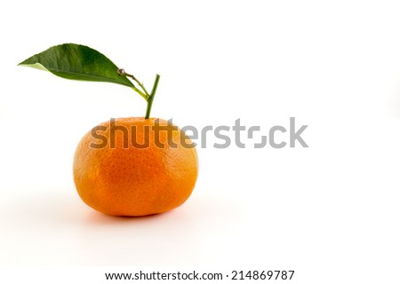 Tangerine or mandarin fruit with leaf  on white background.