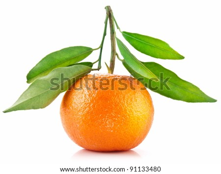 Tangerine with leaves on white background.