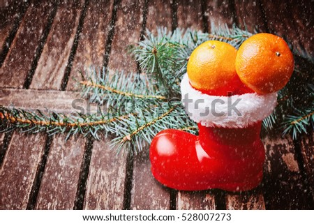 Tangerines in christmas stocking with pine fir