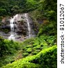 Tea plantations with water fall Munnar, Kerala, India /Tea estate/tea estate - stock photo