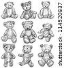 teddy bears - stock vector