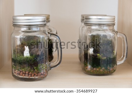 Terrarium Many little plants growth inside glass container for hobby and decorate house Give