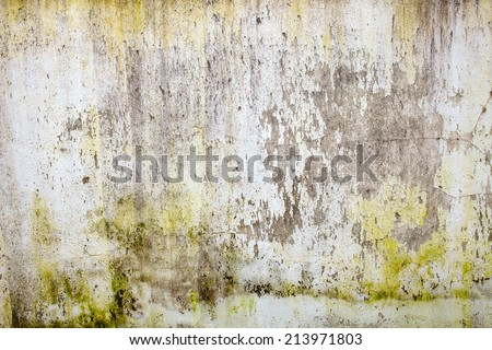 Wall green stains dirt on surface stock photo 278312114 for Removing dirt stains from concrete