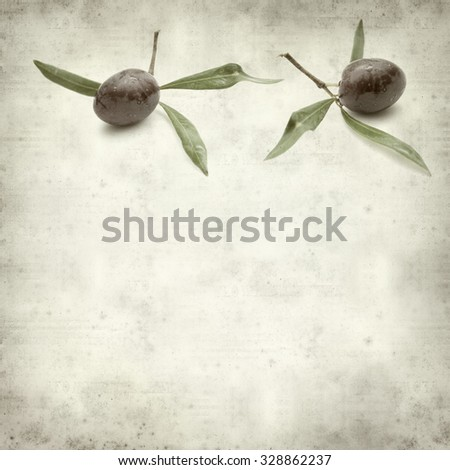 textured old paper background with ripening olives on branches