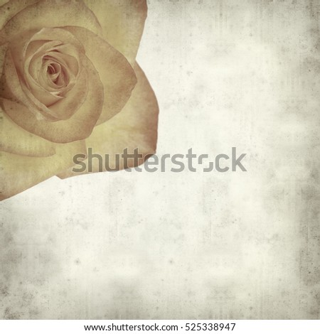 textured old paper background with yellow and orange rose