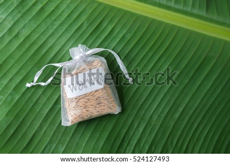 thai paddy rice with alphabet thai tag is sufficient of thai king philosophy