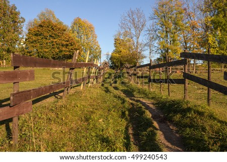 The autumn landscape with a fence  in Norway