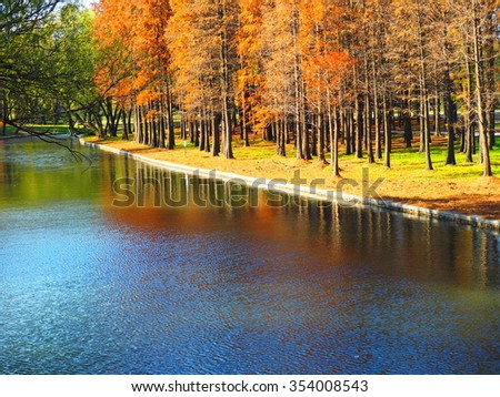 The beautiful and colorful park in autumn sunny day