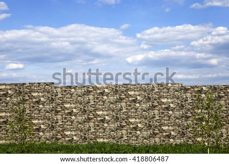 The birch on background of brick wall with cloud sky