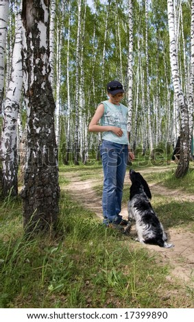The girl with a dog in a birchwood.