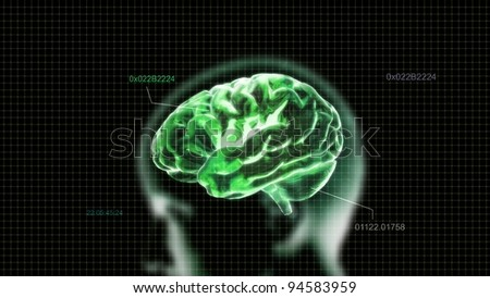 the green crystal brain render for medical and biology concept