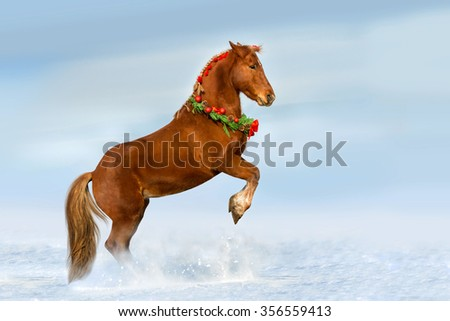 The horse reared in the decorated Christmas wreath