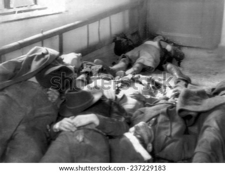 The 1956 Hungarian Uprising Bodies of some of the fifty rebels in Magyaovar Hungary.