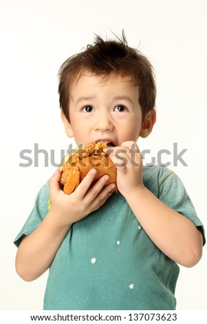 The little boy eating a hamburger/The boy eating a hamburger. Selective focus on a hamburger. Isolated on a white background.