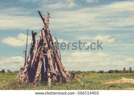 The logs of dry trees on a background of blue sky