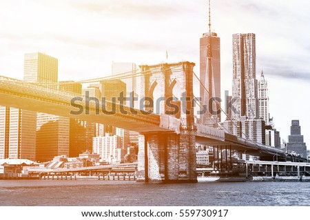 The Manhattan skyline and Brooklyn Bridge seen from Brooklyn Bridge Park in Brooklyn, New York.
