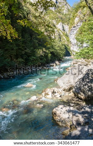 The mountain river  in the autumn day, Abkhazia.