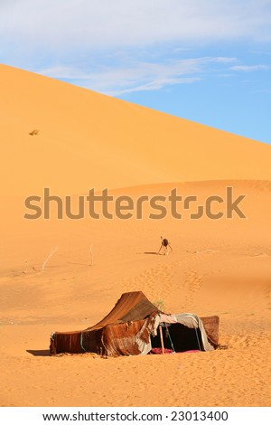 The nomad (Berber) tent in the Sahara, Morocco
